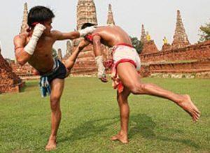 แม่ไม้มวยไทย